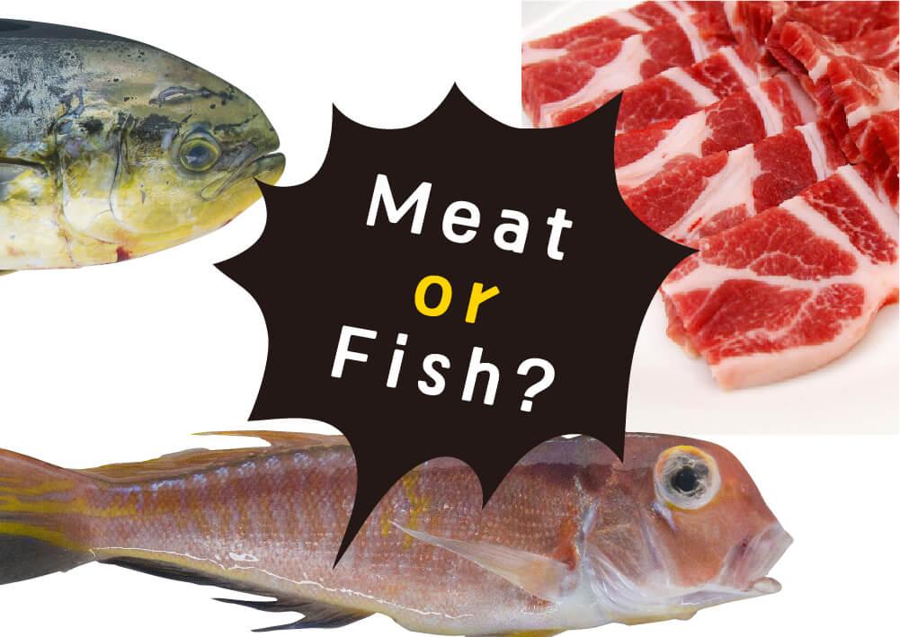 この街には最高の肉と魚がある。食べたいのはどっち?Meat or Fish?