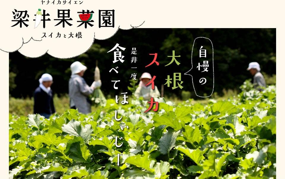 梁井果菜園
